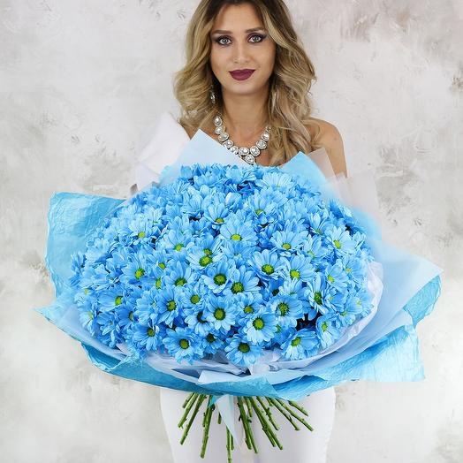 Букет из 25 голубых хризантем
