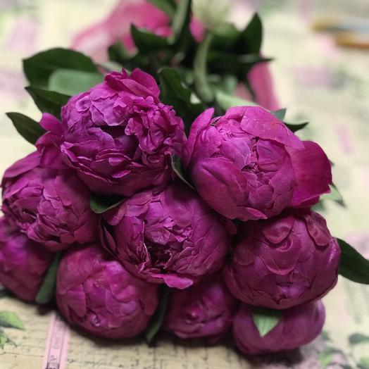 Пионы Ред Сара: букеты цветов на заказ Flowwow