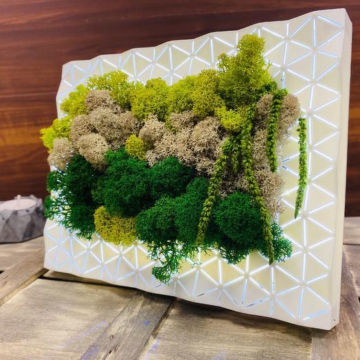 Панно со мхом с подсветкой: букеты цветов на заказ Flowwow