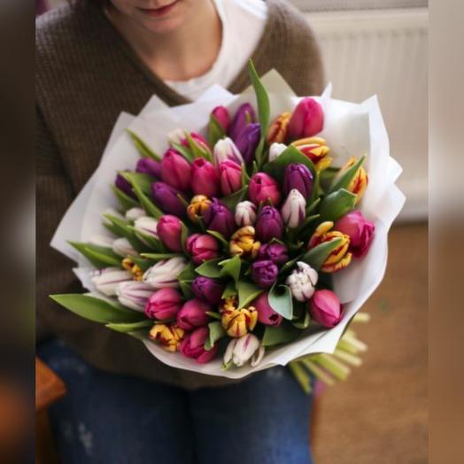 51 тюльпан , свежайшие тюльпаны утренней срезки прямо с теплиц