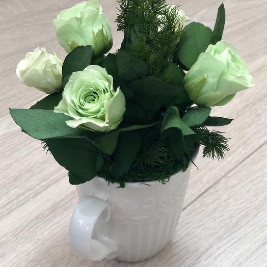 Фисташковые розы