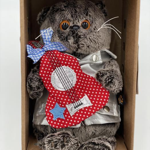 Кот басик в коробке