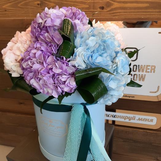 Гортензия7: букеты цветов на заказ Flowwow
