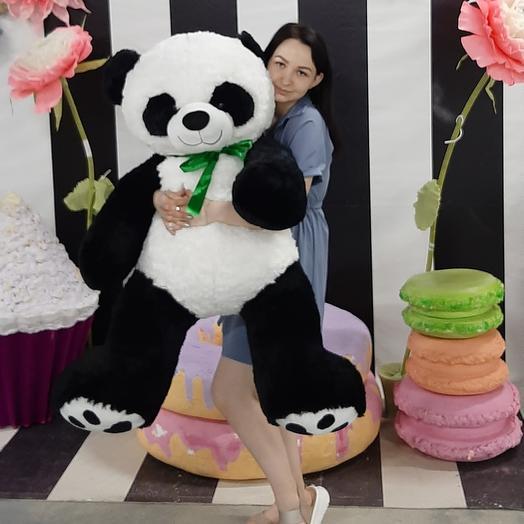 Панда 1,7