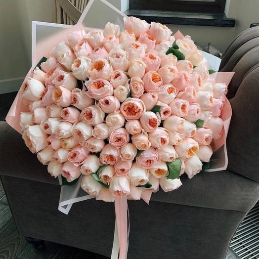 Букет премиум Роза пионовидная 101