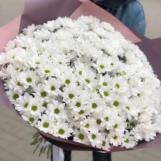 Шикарный букет из 51 хризантемы