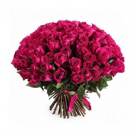 101 малиновая роза Кения: букеты цветов на заказ Flowwow