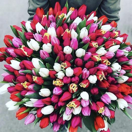 201 тюльпан: букеты цветов на заказ Flowwow