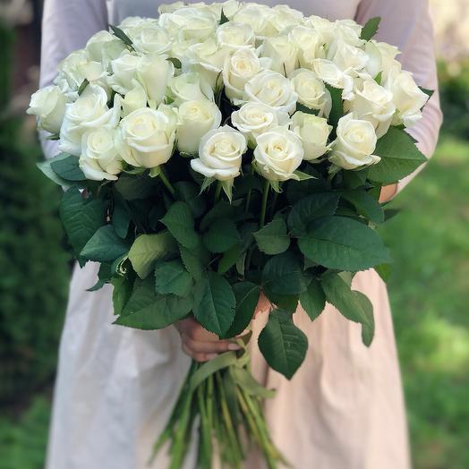 "Букет 51 белая роза ""Арктика"""