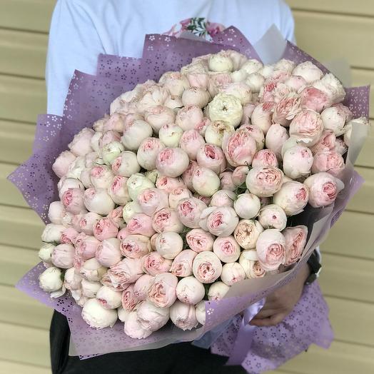 Букет из розовых пионовидных роз Мэнсфилд Парк (101 шт). N635: букеты цветов на заказ Flowwow