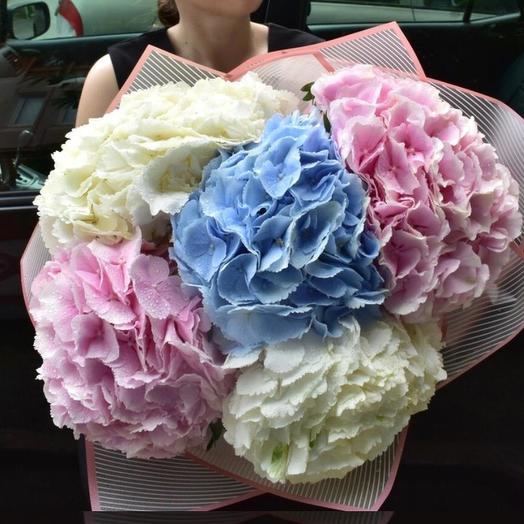 Микс из гортензий 5 шт: букеты цветов на заказ Flowwow