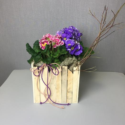 Нежный первоцвет: букеты цветов на заказ Flowwow