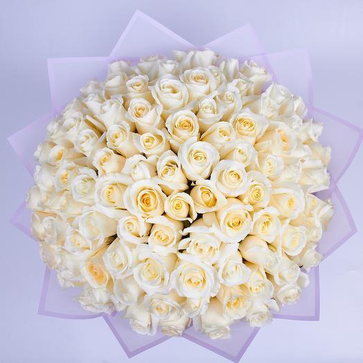 101 белая элитная роза Эквадор