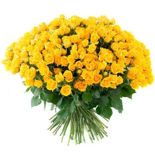 Роза кустовая 19 шт