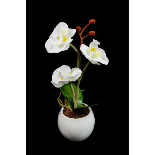 Светодиодный светильник Орхидея mini белая