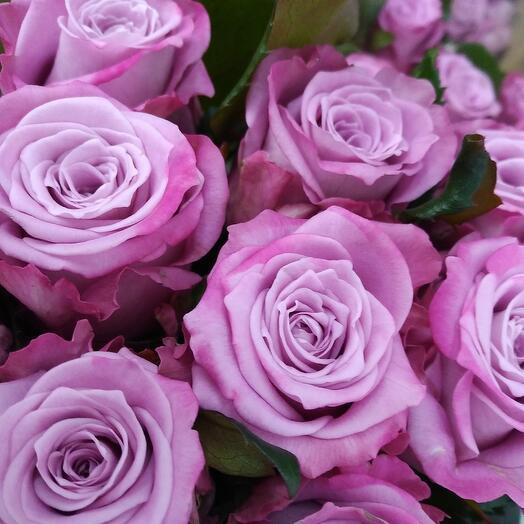 """Букет из 19 роз Маритим """"Черничное мороженое"""". Букет из роз. Букет роз. Букет с розами"""