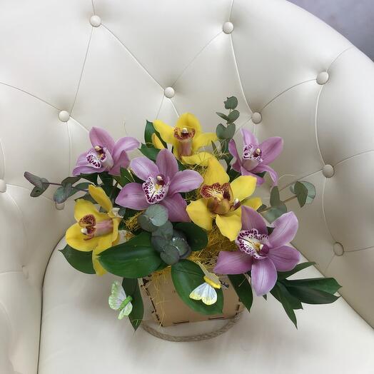 Стиль орхидей