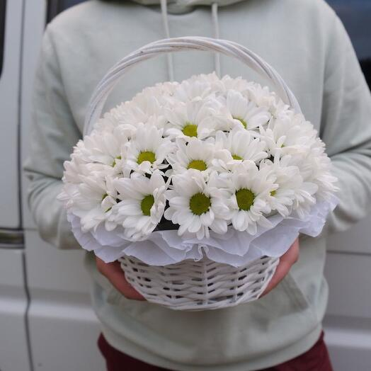 Basket with chamomile chrysanthemum