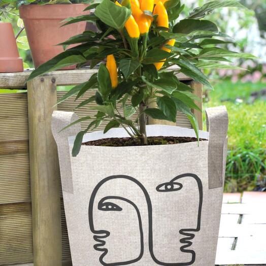 Сумка для растения