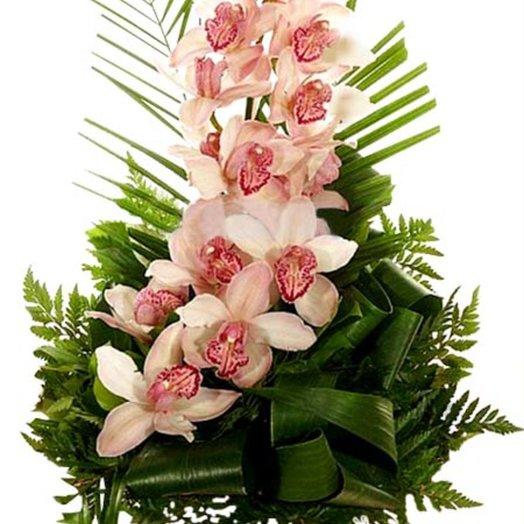 Букет из орхидей Венера: букеты цветов на заказ Flowwow