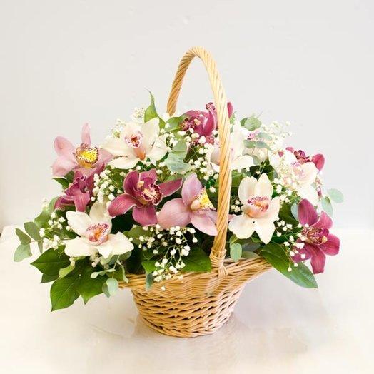Корзина из орхидей Неотразимая орхидея: букеты цветов на заказ Flowwow