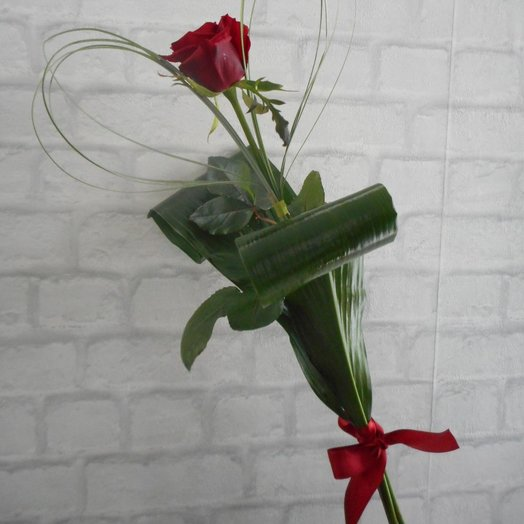 Одна Красная Роза: букеты цветов на заказ Flowwow