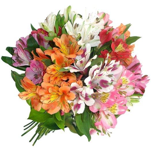 Alstromeria Mix: flowers to order Flowwow