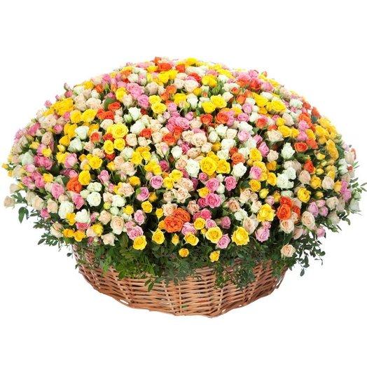 Корзина из 301 кустовой розы: букеты цветов на заказ Flowwow