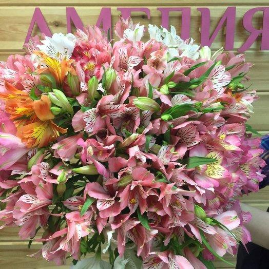 51 альстромерия: букеты цветов на заказ Flowwow