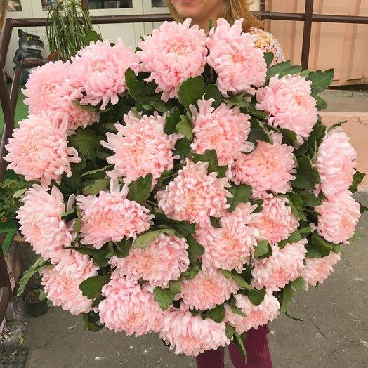 Букет из 25 розовых хризантем: букеты цветов на заказ Flowwow
