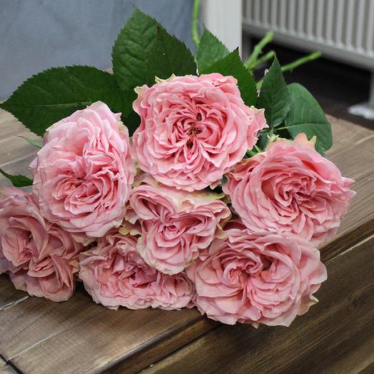 Пионовидная роскошь: букеты цветов на заказ Flowwow