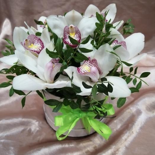 Коробочка белых орхидей: букеты цветов на заказ Flowwow