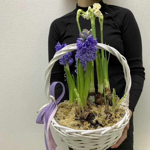 Любимой: букеты цветов на заказ Flowwow