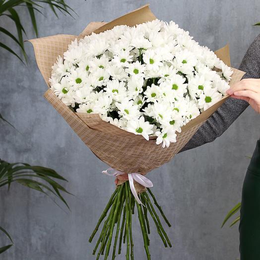 Букет из 25 белых кустовых хризантем Бакарди