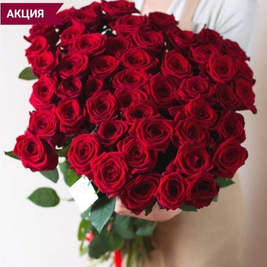 Отличная цена! 51 красная роза Эквадор 70 см