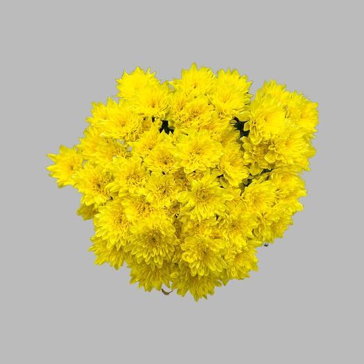 Букет из желтой кустовой хризантемы