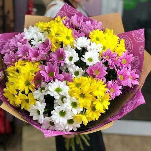 11 разноцветных кустовых хризантем