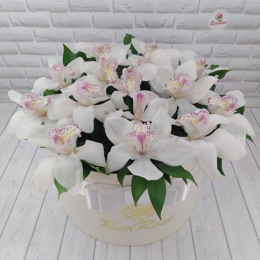 15 орхидей в шляпной коробке XL: букеты цветов на заказ Flowwow