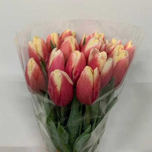 Тюльпан розово-белый: букеты цветов на заказ Flowwow