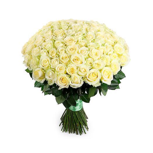 101 белая роза (70 см)