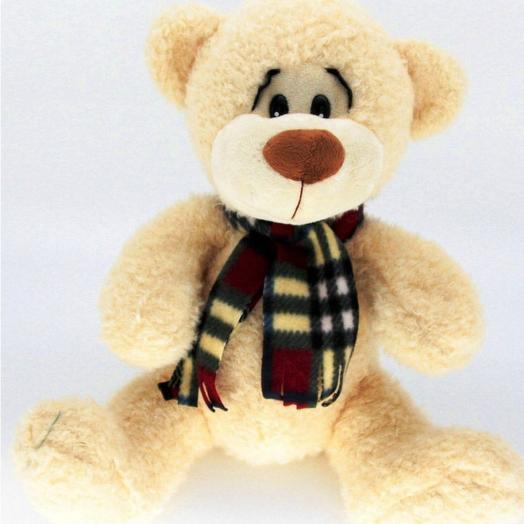 Медведь Миша 30см
