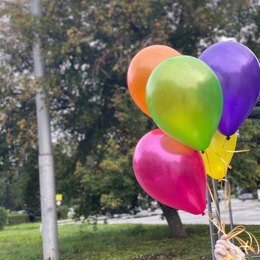 Набор 5 разноцветных шариков