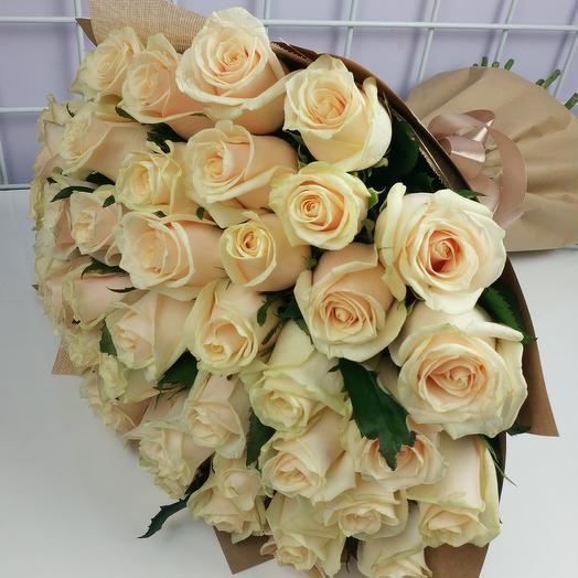 Роза кремовая 51