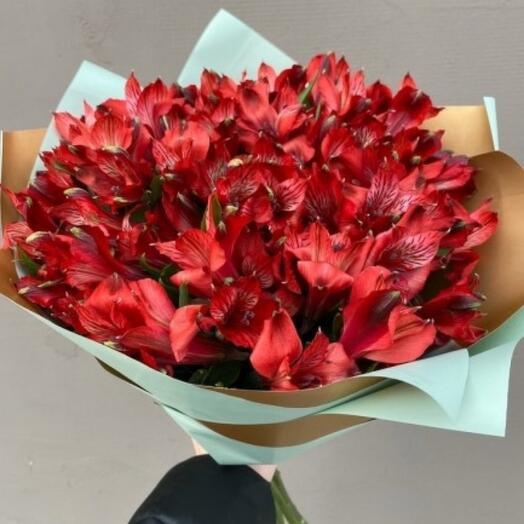 11 красных альстромерии