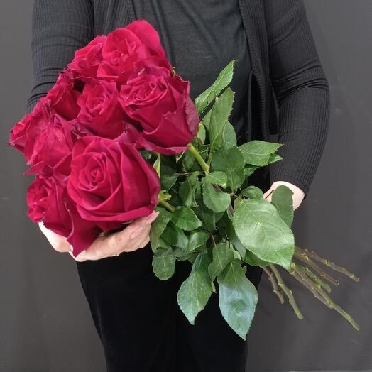 Шикарные розы 🌹