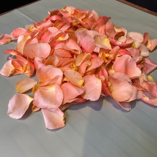 Лепестки роз (разноцветные)