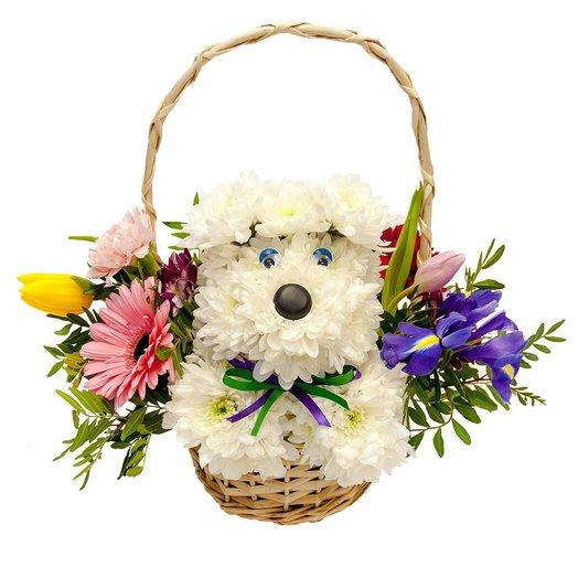 Петербург интернет магазин цветов