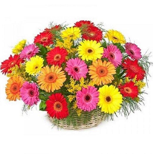 Корзина из 29 гербер с солидаго: букеты цветов на заказ Flowwow