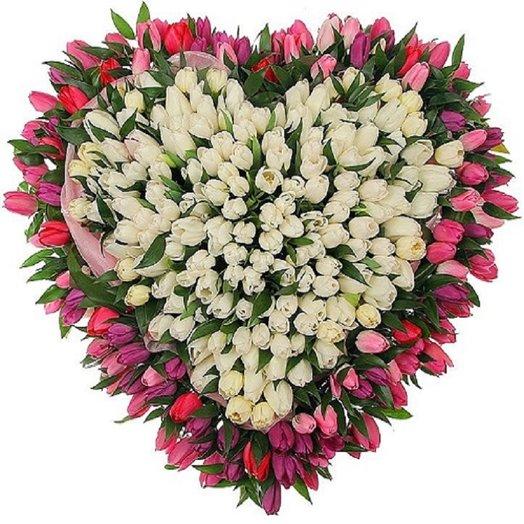 Сердце из 251 тюльпана микс: букеты цветов на заказ Flowwow