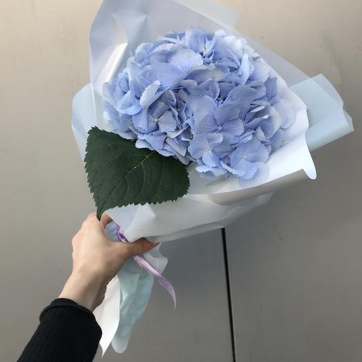 Гортензия💙: букеты цветов на заказ Flowwow